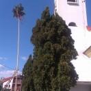Máj pri kostole